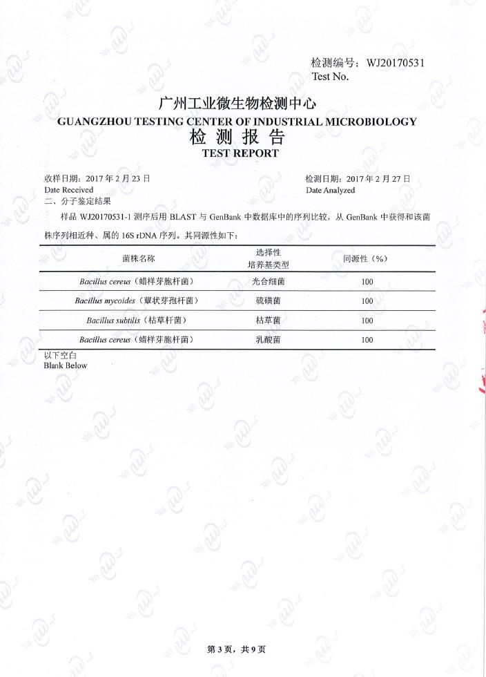 广微检测报告3